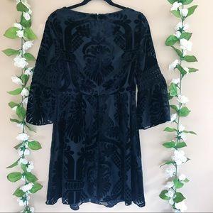 Eliza J Dresses - Eliza J Burnout Velvet Fit And Flare Dress